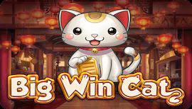 BIG WIN CAT SLOT รีวิว