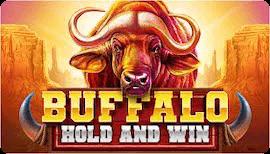 BUFFALO HOLD AND WIN SLOT รีวิว