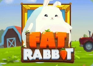 Fat Rabbit Slot Thailand