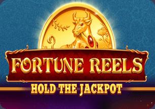 Fortune Reels Slot