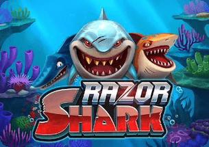 Razor Shark Slot Thailand