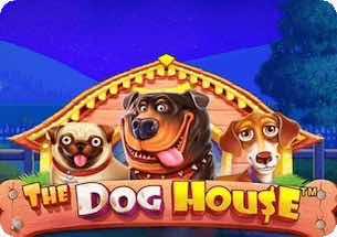 The Dog House Slot Thailand